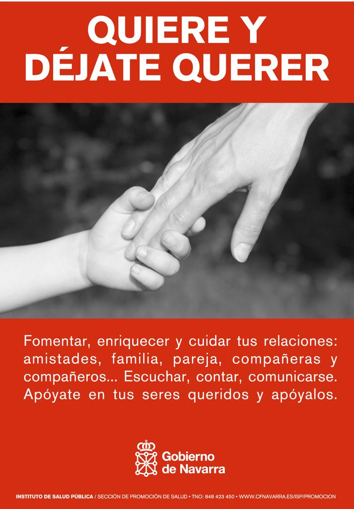 estructura instituto bienestar social navarra: