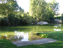 Las diez zonas naturales de ba o de navarra son aptas para for Piscinas naturales urederra