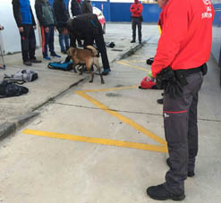 Policía foral programa un dispositivo especial para fiestas de Tafalla