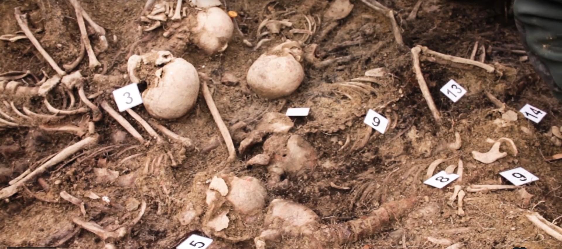 Imagen de los restos hallados en la fosa de Olave